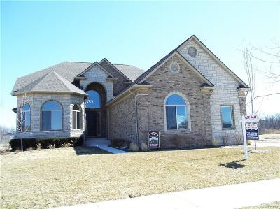 Macomb Single Family Home For Sale: 54726 Deadwood