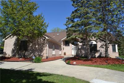 Farmington Hills Single Family Home For Sale: 30768 Huntsman Dr E