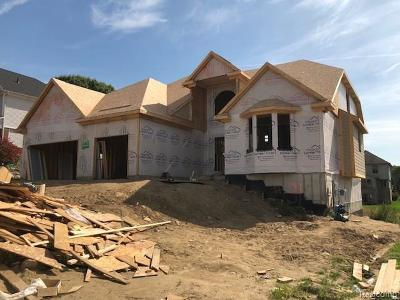 Clarkston Single Family Home For Sale: 6127 Foxfire Cir