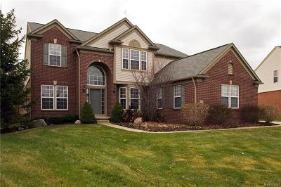 Lake Orion Single Family Home For Sale: 4954 Catalina Dr