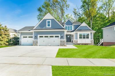 Northville Single Family Home For Sale: 22705 Novi Rd