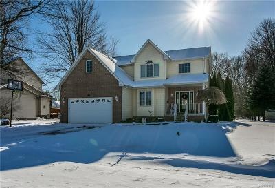 St. Clair Single Family Home For Sale: 3819 Cedar Ridge Dr