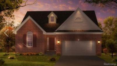 Livonia Single Family Home For Sale: 19624 Merriman Crt