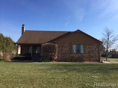 Farmington Hills Single Family Home For Sale: 24506 El Marco Dr