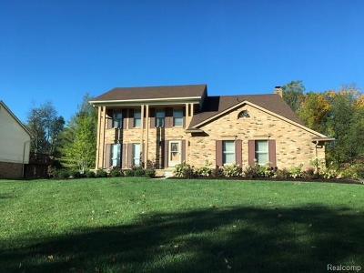 Farmington Hills Single Family Home For Sale: 28481 Lake Park Dr W