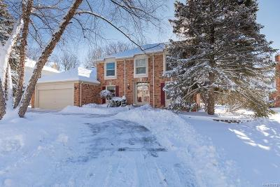 Rochester Hills Single Family Home For Sale: 464 Timberline Dr