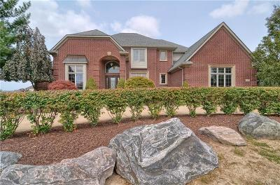 Northville Single Family Home For Sale: 16290 Horseshoe Dr