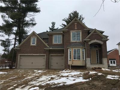 Troy Single Family Home For Sale: 6797 Shelldrake Dr