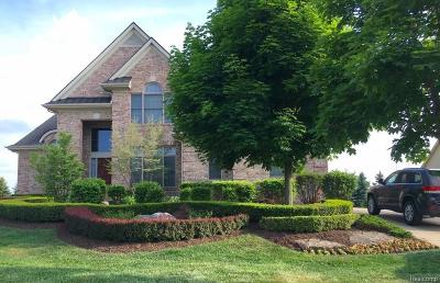 Northville Single Family Home For Sale: 46781 Merion Cir Cir