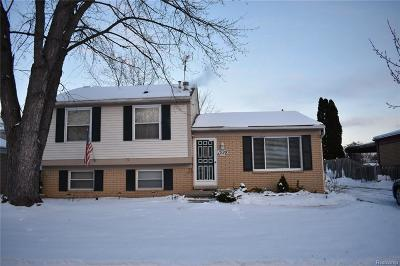 Canton Single Family Home For Sale: 1599 Brookview Dr