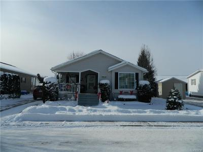 Smiths Creek Single Family Home For Sale: 6189 Twin Lakes