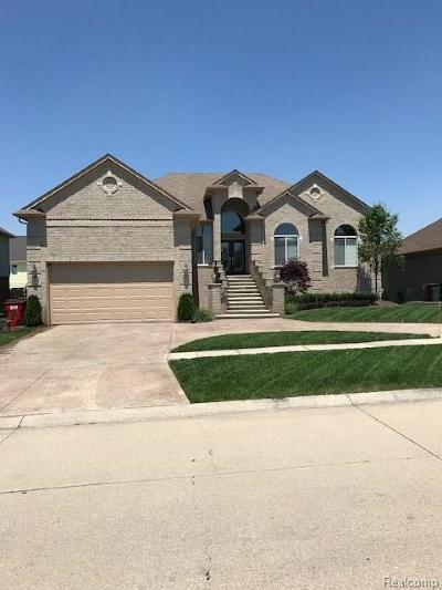 Macomb Single Family Home For Sale: 21305 Course Dr