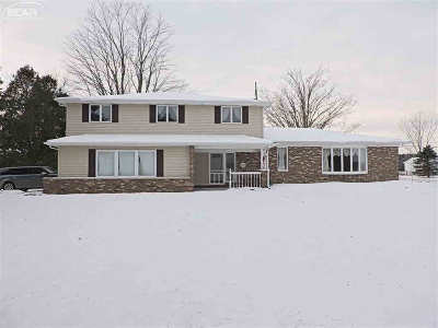 Lapeer Single Family Home For Sale: 2635 Farnsworth Rd