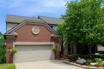 Lake Orion Single Family Home For Sale: 21 Franklin Wright Blvd