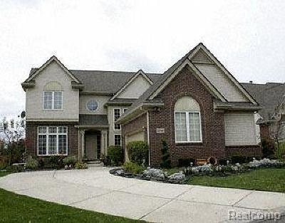 Farmington Hills Single Family Home For Sale: 22141 Abington