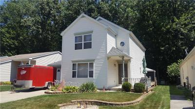 Algonac Single Family Home For Sale: 9389 Lakepointe Blvd Blvd