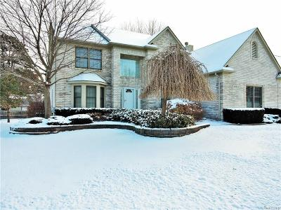Shelby Twp Single Family Home For Sale: 49634 Sandra Dr