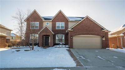 Macomb Single Family Home For Sale: 18190 Hogan Dr