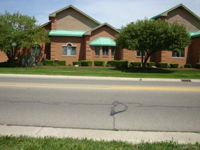 Clinton Township Commercial/Industrial For Sale: 18645 Canal