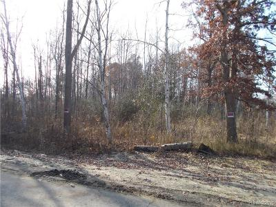 Lapeer Residential Lots & Land For Sale: Coldwater Lot #2 Rd