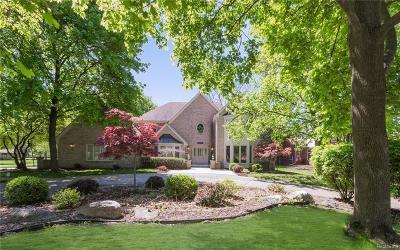 Farmington Hills Single Family Home For Sale: 34015 Lyncroft St