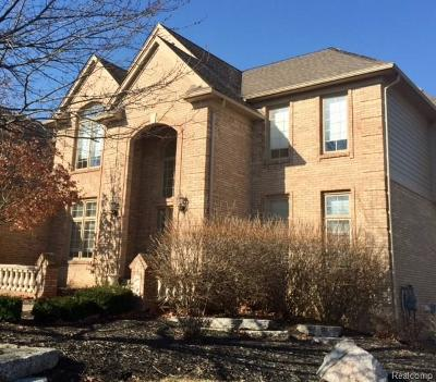 Shelby Twp Single Family Home For Sale: 2161 Nickelby Dr