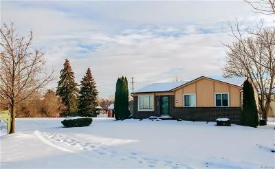 Canton Single Family Home For Sale: 41431 Stafford Crt