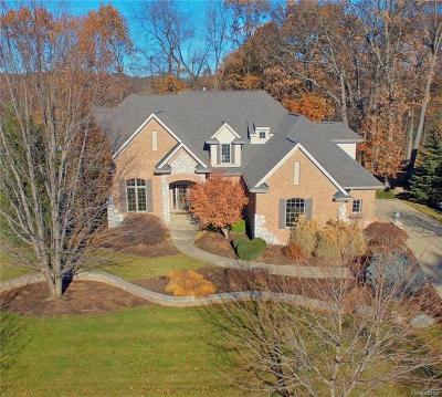 Clarkston Single Family Home For Sale: 6956 Oakhurst Ridge Rd