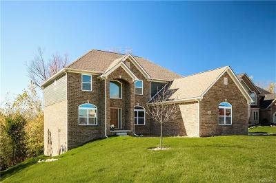 Macomb Single Family Home For Sale: 62051 Sawgrass Dr