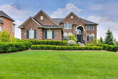Northville Single Family Home For Sale: 18776 Stonewater Blvd