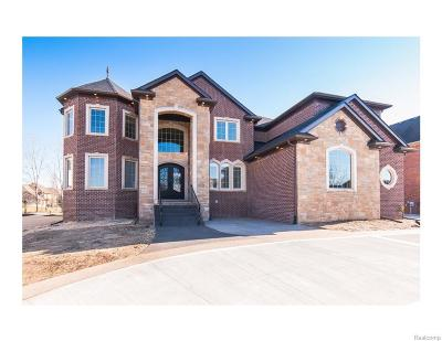 Northville Single Family Home For Sale: 50370 Boardwalk Ave