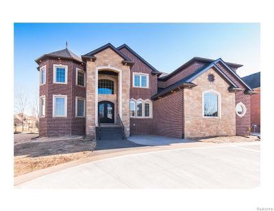Northville Single Family Home For Sale: 50400 Boardwalk Ave