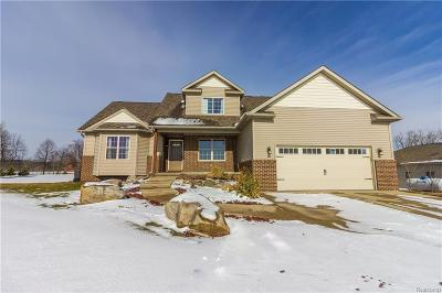 Lapeer Single Family Home For Sale: 4664 Holly Lake Rd