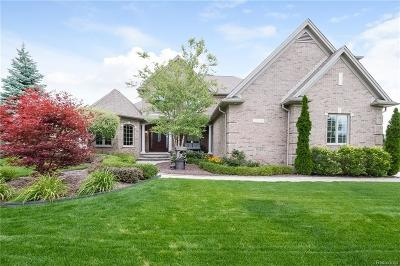 Macomb Single Family Home For Sale: 56210 Summit Dr