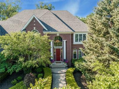Northville Single Family Home For Sale: 17583 Stonebrook Dr