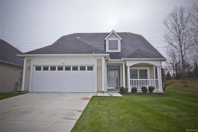 Auburn Hills Single Family Home For Sale: 3604 Camden Crt