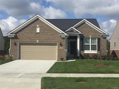 Lake Orion Single Family Home For Sale: 1230 Lark