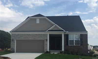 Lake Orion Single Family Home For Sale: 3309 Skylark Crt