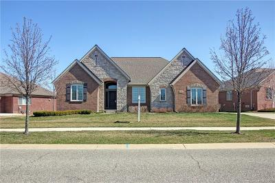 Macomb Single Family Home For Sale: 6497 Jeffersonian