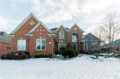 Macomb Single Family Home For Sale: 14270 Oakwood Dr