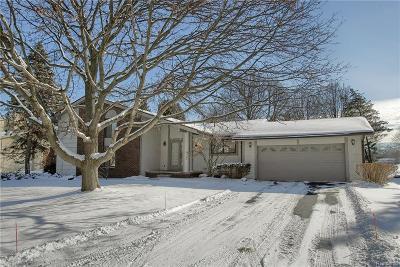 Farmington Hills Single Family Home For Sale: 29235 Creek Bend Dr