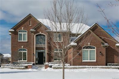 Northville Single Family Home For Sale: 22803 Poppleton Dr