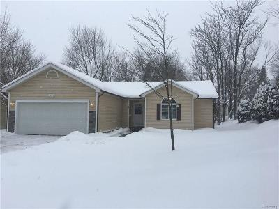 Lake Orion Single Family Home For Sale: 463 N Conklin Rd
