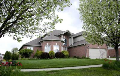 Macomb Single Family Home For Sale: 46083 Lookout Dr