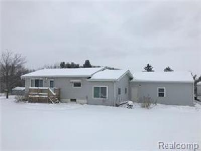Lapeer Single Family Home For Sale: 9012 Lapeer Rd