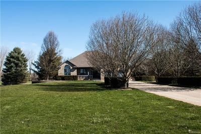 Lapeer Single Family Home For Sale: 7571 Rider Rd