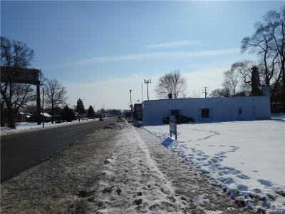 Detroit Residential Lots & Land For Sale: 16611 Meyers