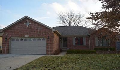 Macomb Single Family Home For Sale: 15834 Myrtle Drive