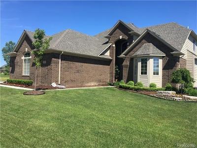 Macomb Single Family Home For Sale: 7609 Hartwick Crt