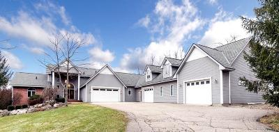 Lapeer Single Family Home For Sale: 4540 Danbi Dr